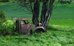 Caminhão oxidado coberto de vegetação por videiras foto de stock royalty free