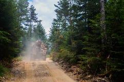 Caminhão que transporta a madeira na floresta imagens de stock