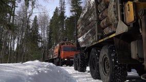 Caminhões carregados com o movimento da madeira fora da floresta filme