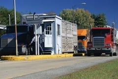 Caminhões pesados Fotografia de Stock Royalty Free