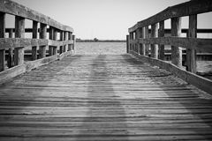 Caminhada à água Foto de Stock Royalty Free