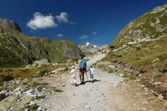 Caminhada Imagem de Stock Royalty Free