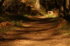 caminhada Fotografia de Stock Royalty Free