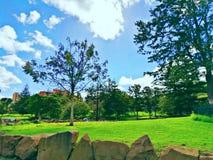 Caminhada ao parque fotografia de stock