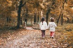 Caminhada através da floresta com sua irmã imagem de stock royalty free