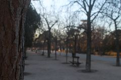 Caminhada através do parque fotografia de stock