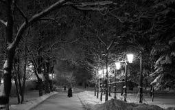 Caminhada através do parque do inverno Imagens de Stock
