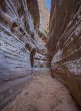Caminhada através dos estreitos - paisagem do vale do fogo perto de Las Vegas Nevada nanovolt EUA foto de stock royalty free