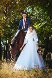 Caminhada bonita do casamento do verão na natureza Fotografia de Stock
