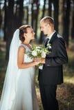 Caminhada bonita do casamento do verão na natureza Foto de Stock Royalty Free