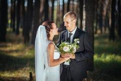 Caminhada bonita do casamento do verão na natureza Fotos de Stock