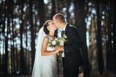 Caminhada bonita do casamento do verão na natureza Imagem de Stock