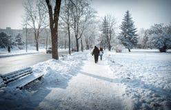 Caminhada da cidade do inverno Fotografia de Stock