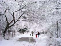 Caminhada da família na neve