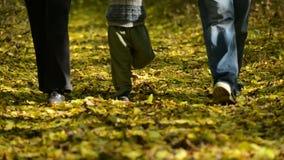 Caminhada da família nas madeiras filme