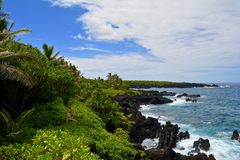 Caminhada da fuga do oceano de Maui do litoral foto de stock