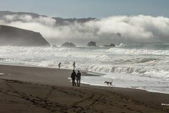 Caminhada da manhã com o rolamento da névoa na baía Fotografia de Stock