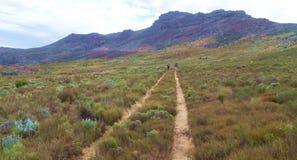 Caminhada da montanha de Cedarberg Fotografia de Stock Royalty Free