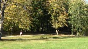 Caminhada da natureza no outono Os povos estão andando na floresta do outono vídeos de arquivo