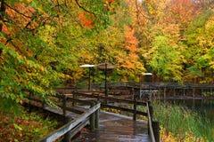 Caminhada da placa através das árvores coloridas Imagem de Stock