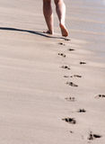 Caminhada da praia Fotografia de Stock