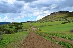Caminhada de Califórnia do sul Fotos de Stock Royalty Free