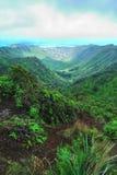 Caminhada de Havaí Ridge Fotos de Stock