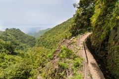 Caminhada de Levada na ilha de Madeira Foto de Stock