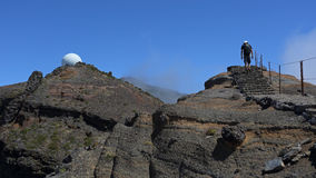 Caminhada de Madeira Foto de Stock