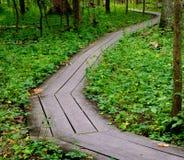 Caminhada de madeira imagens de stock royalty free