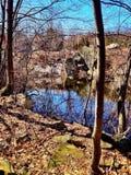 Caminhada de natureza Imagem de Stock Royalty Free