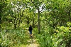 Caminhada de relaxamento Imagens de Stock Royalty Free