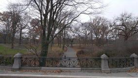 Caminhada de relaxamento através do Central Park New York filme