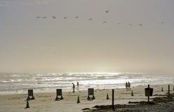 Caminhada do amanhecer ao longo da costa do oceano Imagens de Stock