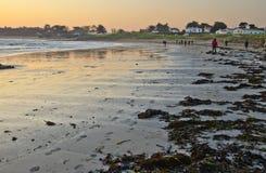 Caminhada do amanhecer ao longo do custo arenoso na ilha de Yeu Imagem de Stock