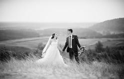 Caminhada do casamento na natureza Foto de Stock