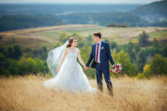 Caminhada do casamento na natureza Imagens de Stock Royalty Free