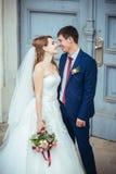 Caminhada do casamento na natureza Foto de Stock Royalty Free