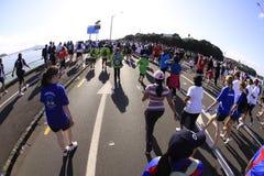Caminhada do funcionamento de Auckland em volta dos louros foto de stock