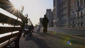 A caminhada do homem com seu cão no alvorecer vídeos de arquivo