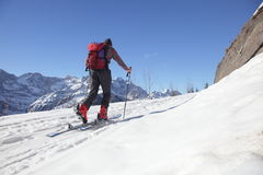 Caminhada do inverno Imagens de Stock Royalty Free