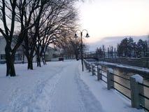 Caminhada do inverno Foto de Stock