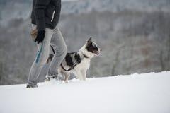 Caminhada do inverno com cão Fotos de Stock