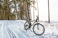 Caminhada do inverno na bicicleta Sibéria ocidental Foto de Stock Royalty Free
