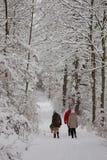 Caminhada do inverno na neve Fotos de Stock Royalty Free