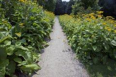 Caminhada do jardim Imagens de Stock Royalty Free