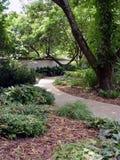 Caminhada do jardim Fotografia de Stock
