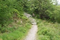 Caminhada do monte de Criffel Imagem de Stock Royalty Free
