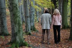 Caminhada do outono foto de stock royalty free