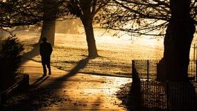 Caminhada do parque de Brockwell Fotos de Stock Royalty Free